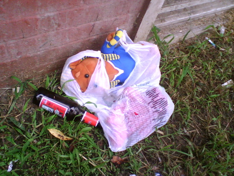 "Lost and Found: ""Bear Hits the Bottle"" - Ives Street, Fox Point, Providence"